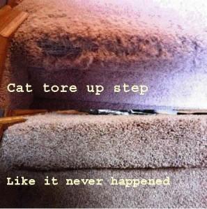 Danscarpet repair step